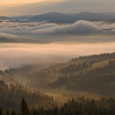 Carpathians in August
